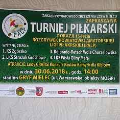 fotografia artykułu Podsumowanie sezonu PALP 2017/2018 - 30 czerwca na stadionie Gryf w Mielcu.